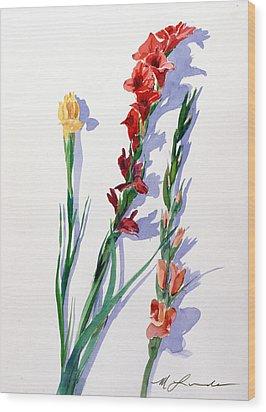 Cut Gladiols Wood Print by Mark Lunde