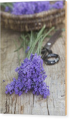 Cut Lavender Wood Print by Tim Gainey