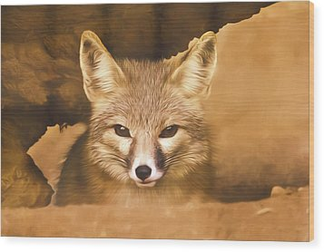 Cute Fox  Wood Print by Brian Cross