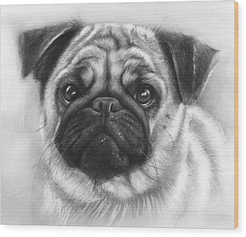 Cute Pug Wood Print by Olga Shvartsur