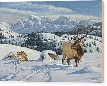 Cutoff Mountain -  Elk And Coyote   Wood Print by Paul Krapf