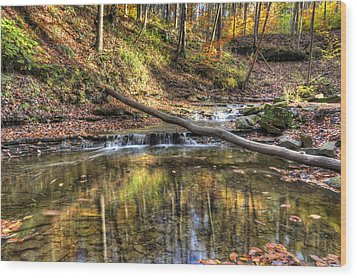 Cuyahoga Valley National Park Wood Print