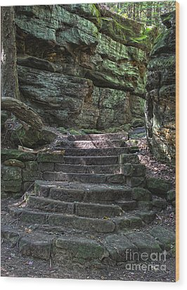 Cuyahoga Valley National Park Wood Print by Jeannette Hunt