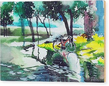 Cycle In The Puddle Wood Print by Anil Nene