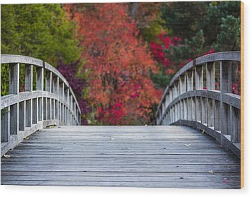 Wood Print featuring the photograph Cypress Bridge by Sebastian Musial
