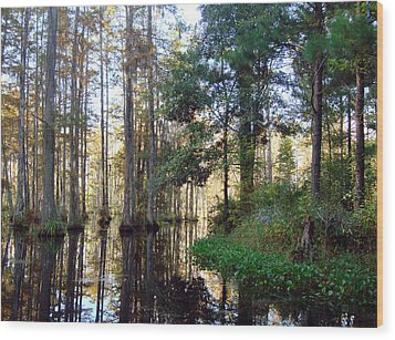 Wood Print featuring the photograph Cypress Gardens 2 by Ellen Tully