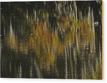 Wood Print featuring the photograph Cypress In Reflection by Andy Crawford