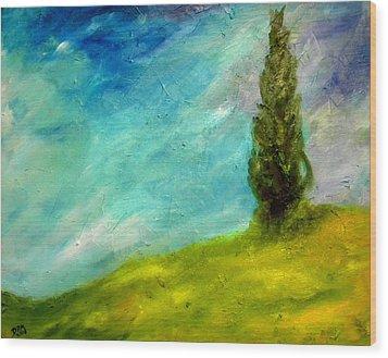 Cypress In Tuscany  Wood Print by David McGhee