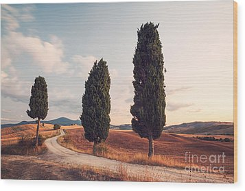 Cypress Lined Road In Tuscany Wood Print by Matteo Colombo