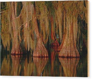 Cypress Maze Wood Print