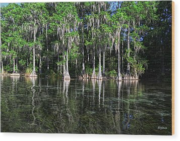 Cypress On Rainbow Wood Print by Bob Jackson