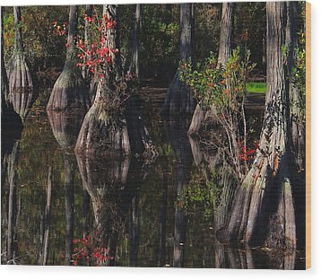 Cypress Reflections Wood Print by Laura Ragland