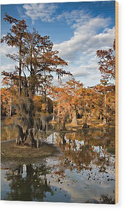 Wood Print featuring the photograph Cypress Rust by Lana Trussell