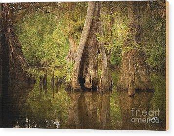 Cypress  Wood Print by Scott Pellegrin