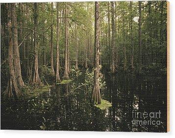 Cypress Swamp Wood Print by Ron Sanford