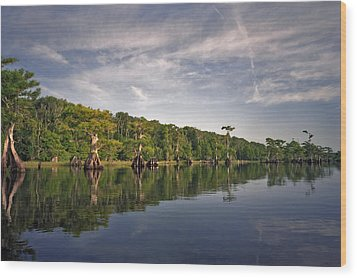 Cypress Wall. Blue Cypress Lake. Wood Print
