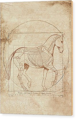 da Vinci Horse in Piaffe Wood Print by Catherine Twomey