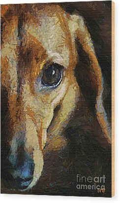 Dachshund Chocolate Wood Print by Dragica  Micki Fortuna