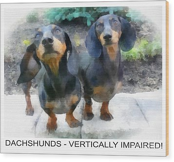 Dachshund Poster Wood Print by Betsy Cotton