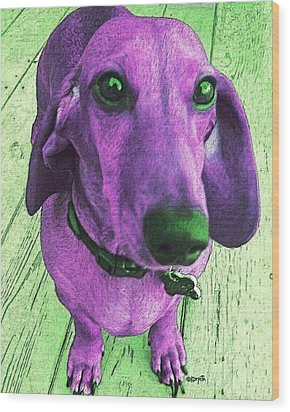 Dachshund - Purple People Greeter Wood Print by Rebecca Korpita
