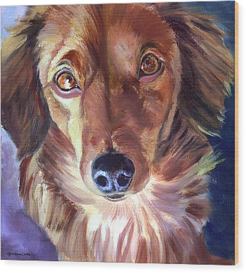 Dachshund Sparkle Eyes Wood Print by Lyn Cook
