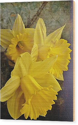 Wood Print featuring the photograph Daffodil Burst by Diane Alexander