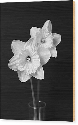 Daffodil Flowers Black And White Wood Print by Jennie Marie Schell