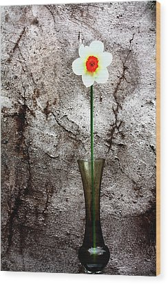 Wood Print featuring the photograph Daffodil by Gray  Artus