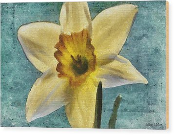 Daffodil Wood Print by Jeff Kolker