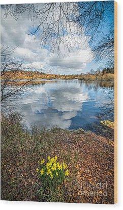 Daffodil Lake Wood Print by Adrian Evans