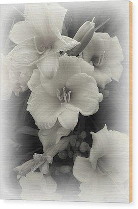 Daffodils Emerge Wood Print by Daniel Hagerman