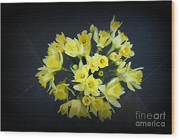 Daffodils Reaching Out Wood Print by Linda Prewer
