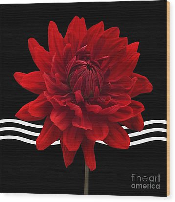 Dahlia Flower And Wavy Lines Triptych Canvas 2 - Red Wood Print by Natalie Kinnear