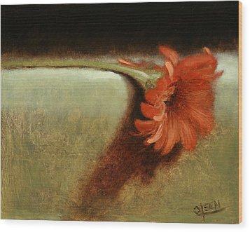 Dahlia Flower Wood Print by Christy Olsen