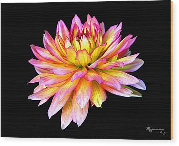 Wood Print featuring the photograph Dahlia by Mariarosa Rockefeller