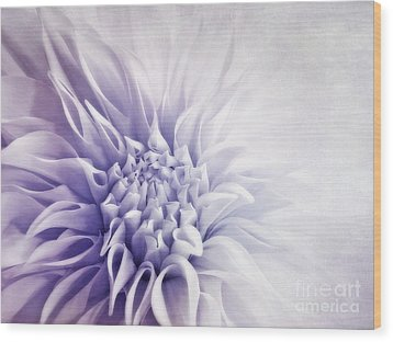 Dahlia Sun Wood Print by Priska Wettstein
