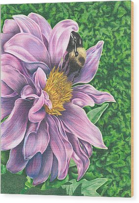 Dahlia Wood Print by Troy Levesque
