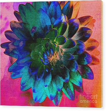 Dahlia With Textures Wood Print by Kathleen Struckle