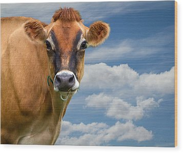 Dairy Cow  Bessy Wood Print by Bob Orsillo