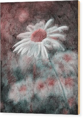 Daisies ... Again - P11ac2t1 Wood Print by Variance Collections