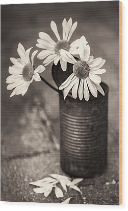 Daisies Can Wood Print by Nancy Strahinic