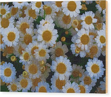 Wood Print featuring the photograph Daisies by Diane Miller