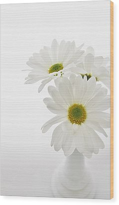Daisies For You Wood Print by Diane Alexander