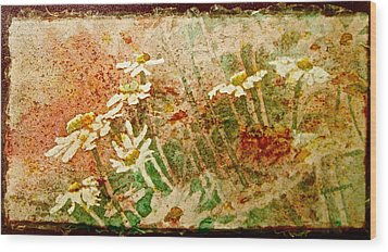 Daisies In The Wind Wood Print