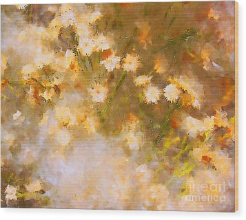 Daisy A Day 21 Wood Print by Julie Lueders