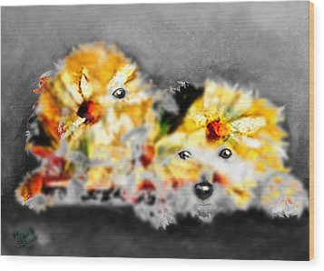 Daisy Animal Wood Print by Marcello Cicchini