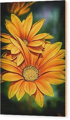 Daisy Blend Wood Print
