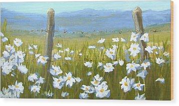 Daisy Dance Wood Print
