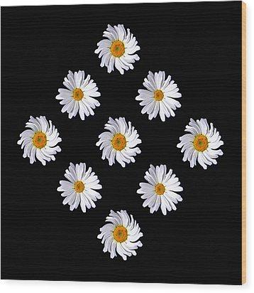 Daisy Diamond Wood Print by James Hammen