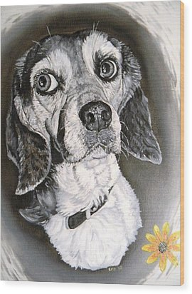Daisy Dog Wood Print by Kevin F Heuman